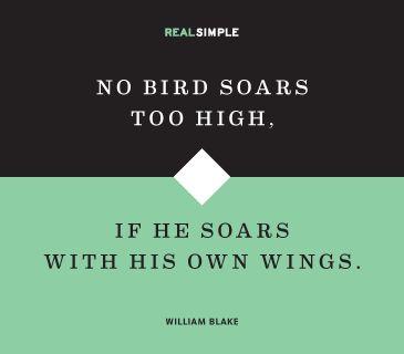 no bird soars too high essay