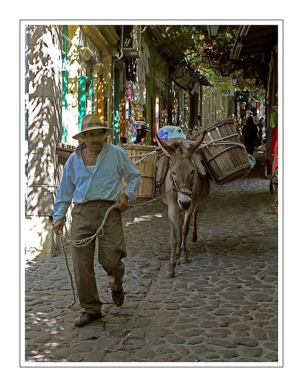Street life in Molyvos - Molyvos, Lesvos. Fresh vegetables from Mr Ignatios and Magdalena the donkey :)