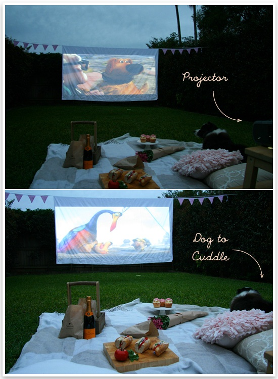 Pretty Fluffy's Outdoor Cinema DIY