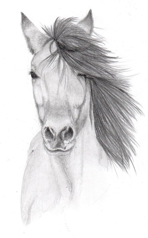 25 beautiful easy pencil drawings ideas on pinterest