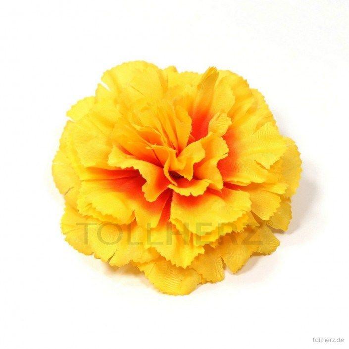 Ansteckblume, Haarblume Nelke in gelb-orange