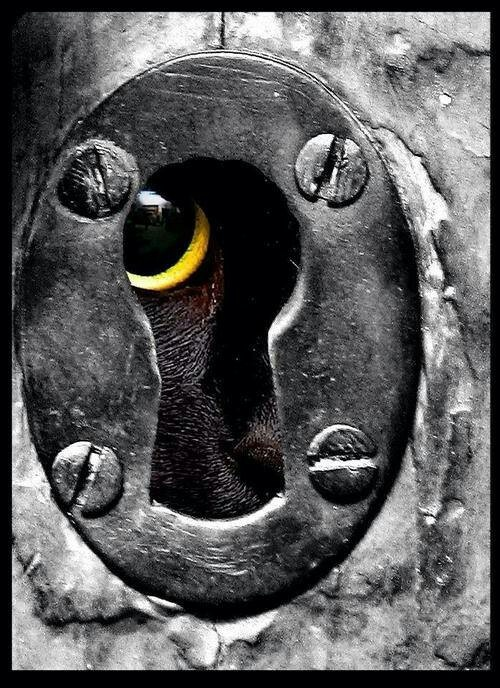 23 Best Images About Key Holes Amp Escutcheon On Pinterest