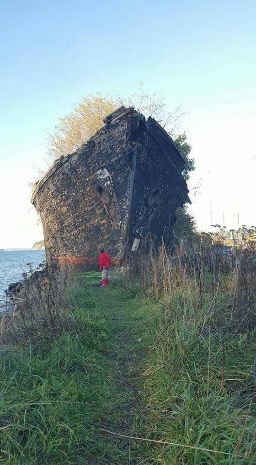 Shipwreck, Anacortes, Washington