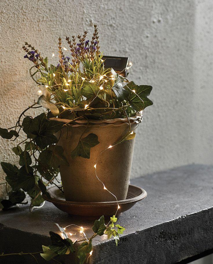 Dew Drop LED Lysslynge fra Star Trading er en delikat og vakker slynge som du kan bruke til å dekorere et bord, en plante eller andre elementer i hage og utemiljø. Den har en helt tynn slynge med små dråper av lys og passer veldig fint blant blomstene.