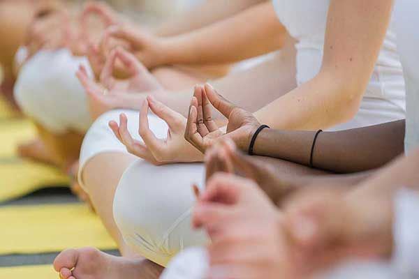 The Yogshala   Yoga, Meditation, Yoga Therapy, Naturopathy