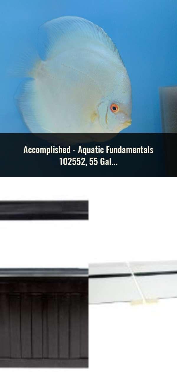 Aquatic Fundamentals