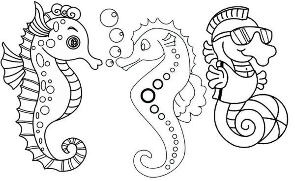 Three Fun And Cute Baby Seahorses Coloring Page Despite The Name