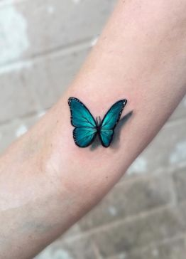 3D butterfly by Kaitlin Dutoit