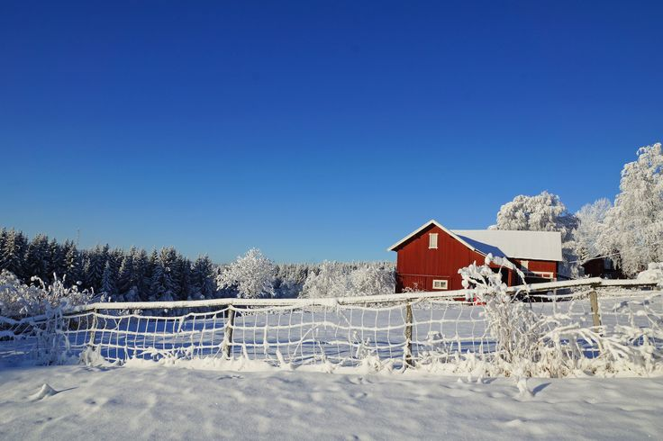 Explore Kjersti Nybakke's 631 photos on Flickr!