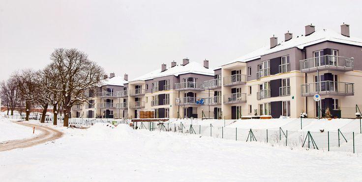 winter @ #Male_Blonia_Estate, #Szczecin, #Poland