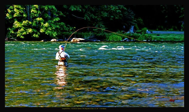 17 best images about fishing fever on pinterest fishing for Vancouver island fishing