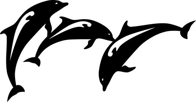 Dolfijn, Vis, Springen, Dierlijke