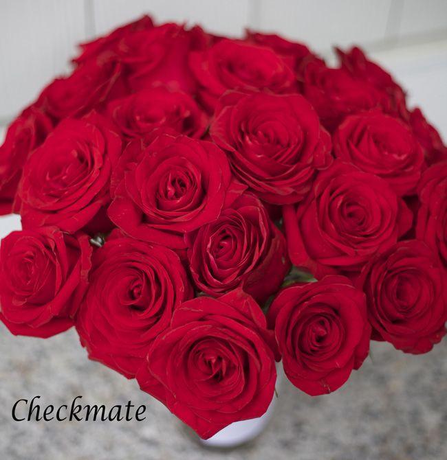 Checkmate red rose ff rose color studies pinterest for Do black roses really exist