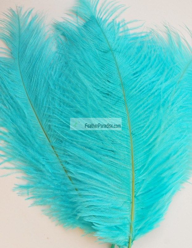 Diamond Blue/Aqua/Coral/Burgundy/Brown Ostrich Feathers 12 pcs (GA,USA) by FeatherParadise on Etsy
