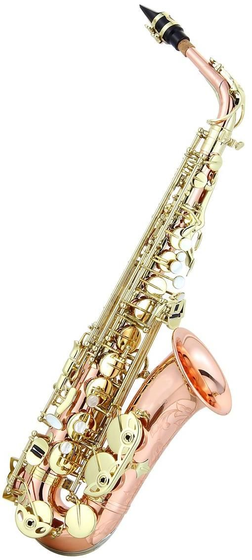 Ravel Paris Rose Brass Professional Eb Alto Saxophone.....loves.....
