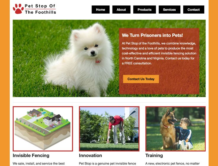 This is a redesign of local Pet Stop dealer in Mount Airy. You want set your pets free? Then pay this website a visit!
