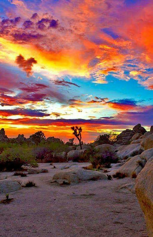 Sunsets are my thing....New Mexico Skies www.visionsofbliss.biz