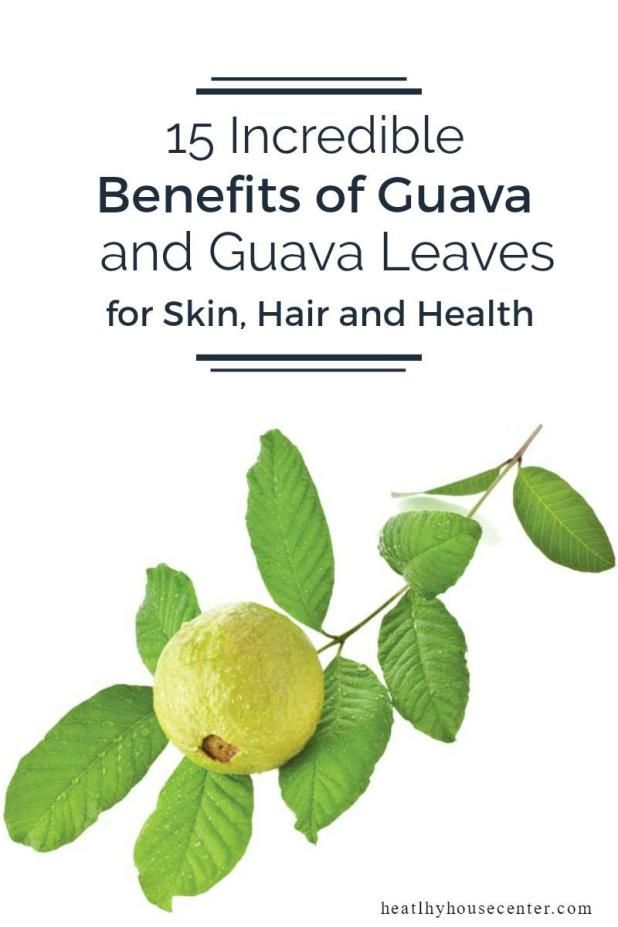 health benefits of guava leaves essay Likewise, guava leaves too have medicinal value and have multiple health benefits it is an antioxidant and is rich in flavanol quercetin which is important for maintaining good health so without overlooking the myriad of medicinal and healthy properties these leaves consists of, lets go through in brief the various health benefits of guava.