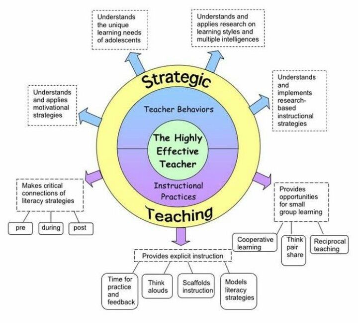Strategic teaching chart literacy in the content areas for Direct interactive instruction lesson plan template