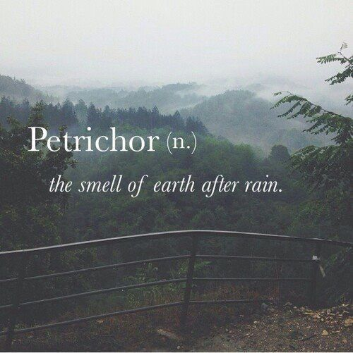 love this word, and love the smell of earth after rain, so melancholic and intimate ♥