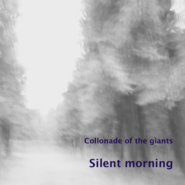 'Silent morning' is a photo in the series 'Colonnade of the giants', part of the gallery 'Enchanted forests'. I made 'Silent morning' last winter in …