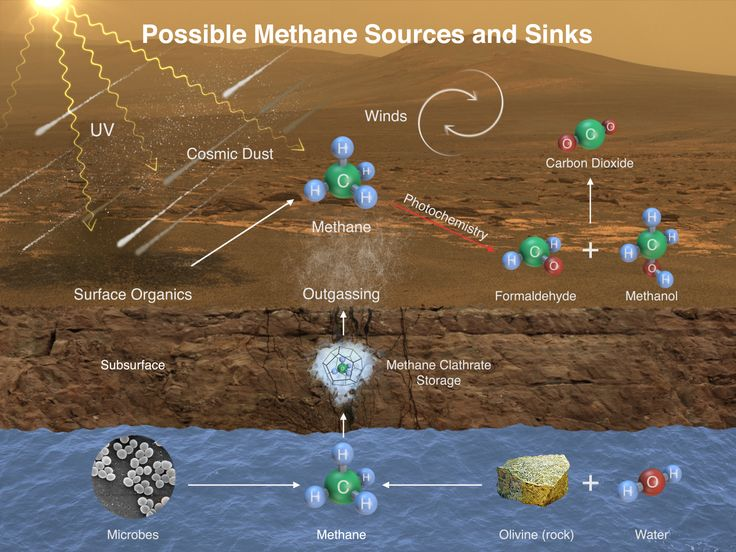 Possible methane sources