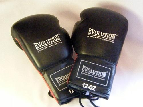 Buy Evolution Professional equipment - Boxing gloves - Red 12 OZ - brand new - as per photofor R200.00