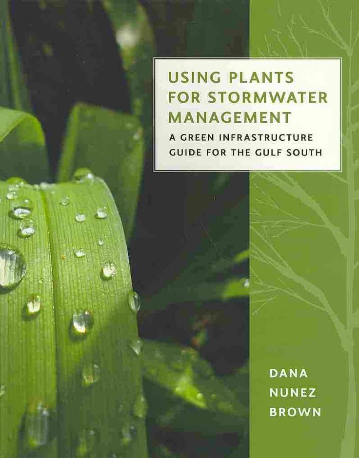 Using Plants for Stormwater Management: A Infrastructure Guide for the Gulf South