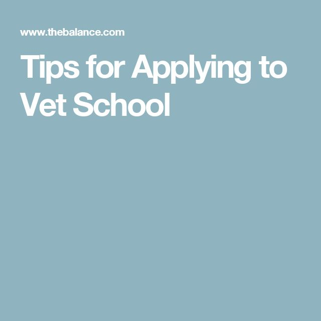 Tips for Applying to Vet School