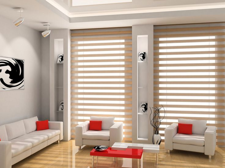 Zebra Blinds Living Room