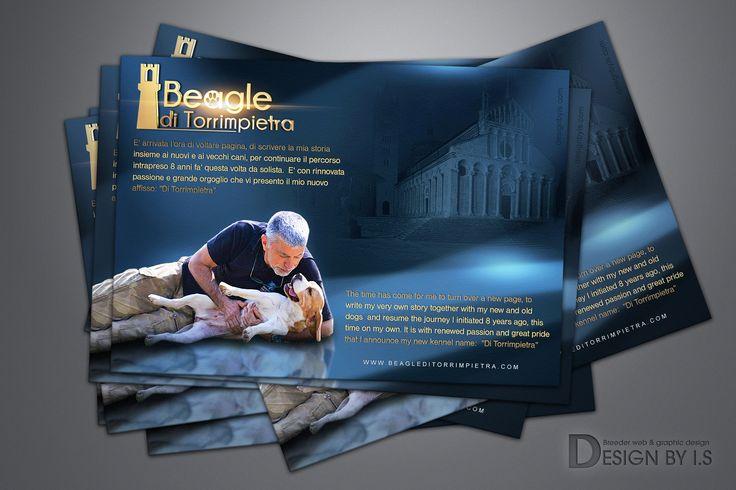 Beagle kennel presentation