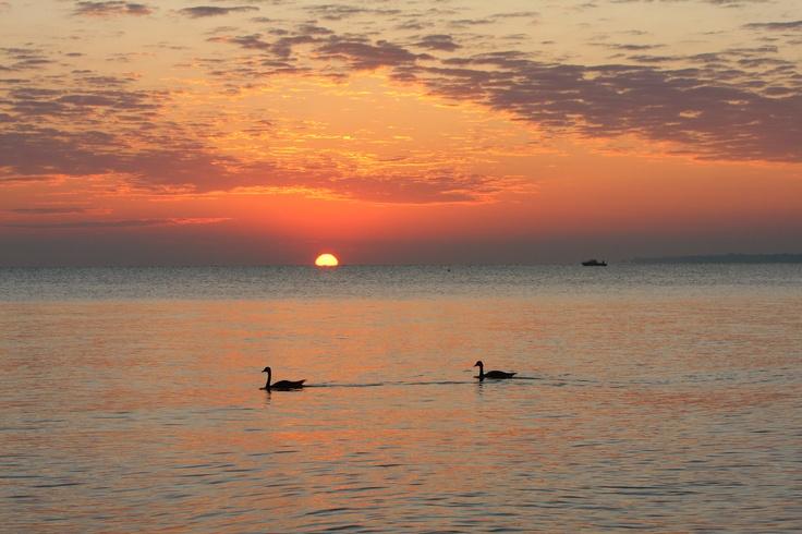 A beautiful Lake Erie sunset :)