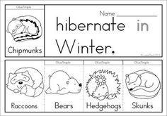 57 best Hibernation Theme Unit images on Pinterest