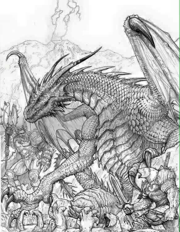 dragon  realistische drachen malvorlagen