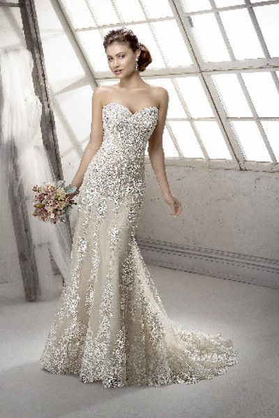 <strong class='info-row'>Sottero & Midgley</strong> <div class='info-row description'>Viera  Dramatic lace on tulle with romantic sweetheart neckline and sprinkled with dazzling Swarovski crystals and bold, embroidered lace hemline. Finished with covered button and inner corset zipper closure. Available with detachable cap-sleeves.</div> <div class='row info-row text-center'> <div class='col-xs-6 col-xs-offset-3'> <a class='image-caption-view-website'…