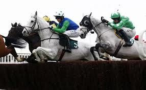 The National Hunt Jumpers