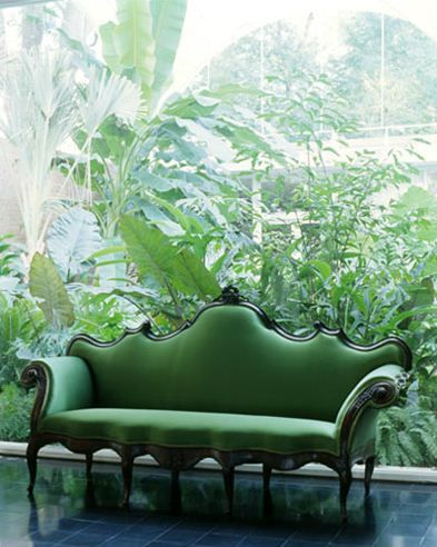 Perfect for parlor:    Huge window to see the greenery better with, very curvy green sofa.