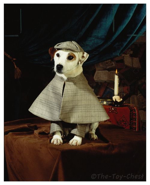 Does this guy even need an introduction? It's Wishbone, ladies and gentlemen!