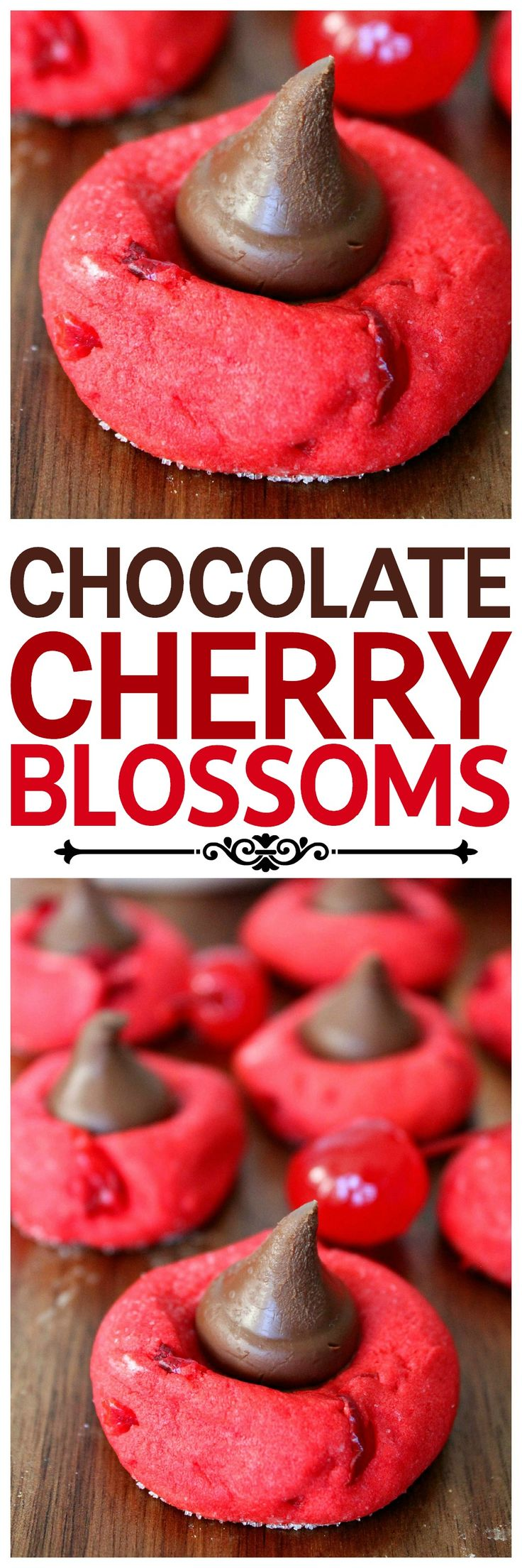 Chocolate Cherry Blossom Cookies: Baking Beauty