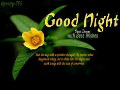 Good Night Quotes with beautiful good night images to finish the day with happiness. My idea of a good night has always been having a lovely meal and a proper conversation. These are some keywords in this post, good night sweet dreams, good night SMS quotes, wishes and greeting good night quotes, Best Wishes Good Night Images, hare you can download free For Facebook, twitter and WhatsApp.