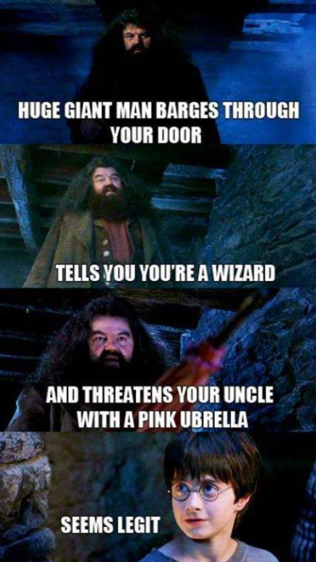 harry potter | funny pics