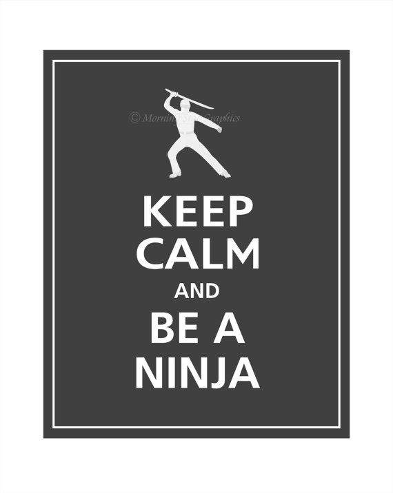 Ninjas seem to fit in with our Own the Night theme for Summer Reading Club 2012. - Could be affiliated with Self Defense Classes -We did Ninjas vrs Pirates event 2 years ago.... Ninjas won. Do a rematch? Ninjas versus Zombies? Ninjas versus Robots?