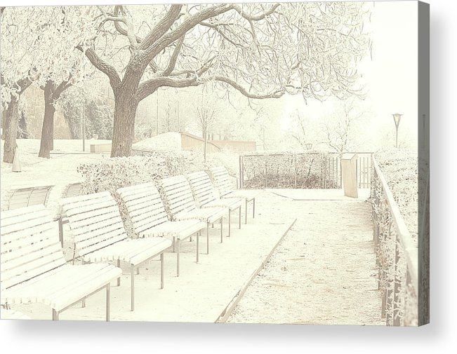 Jenny Rainbow Fine Art Photography Acrylic Print featuring the photograph Denisov Gardens In Brno. Gentle Winter by Jenny Rainbow