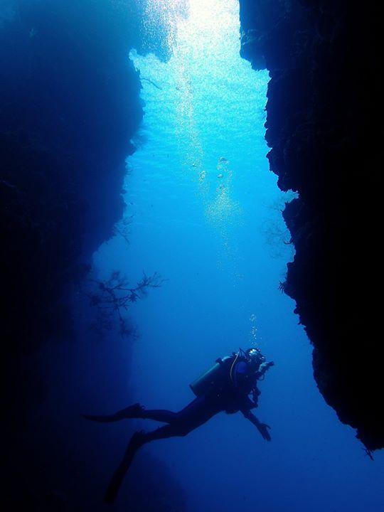 Reward yourself with amazing under water beauty by diving at the Menjangan islands famous ocean wall teeming with colourful coral and fish just a short 10 minutes boat trip from NusaBay Menjangan by WHM Kotal Beach West Bali National Park.  http://ift.tt/2pC1xhd  #nusabaymenjangan #wakahotelsandresorts #waka #menjangan #menjanganisland #diving #snorkeling #underwater #dive #beachfront #beachfrontresort #villa #resort #honeymoon #family #familyholiday #holiday #summer #summerholiday #vacation…