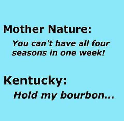 eda5bc4cea9e14c0288b45c1d256e89d kentucky 153 best my kentucky home images on pinterest funny stuff