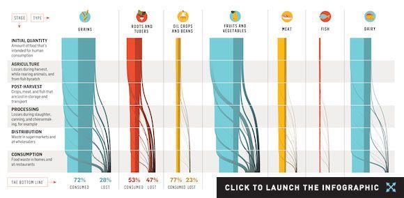 Understanding the Global Problem of Food Waste | TakePart