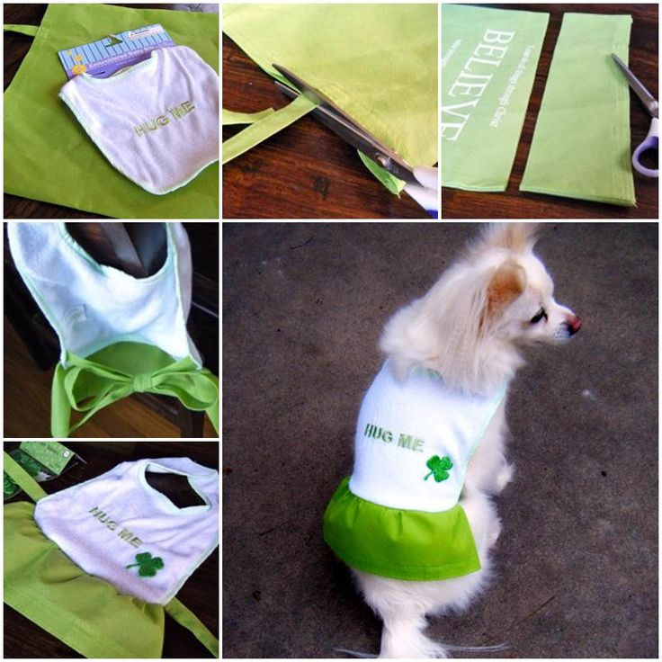 Diy Dog Coat With Dollar Store Materials Diy Pets