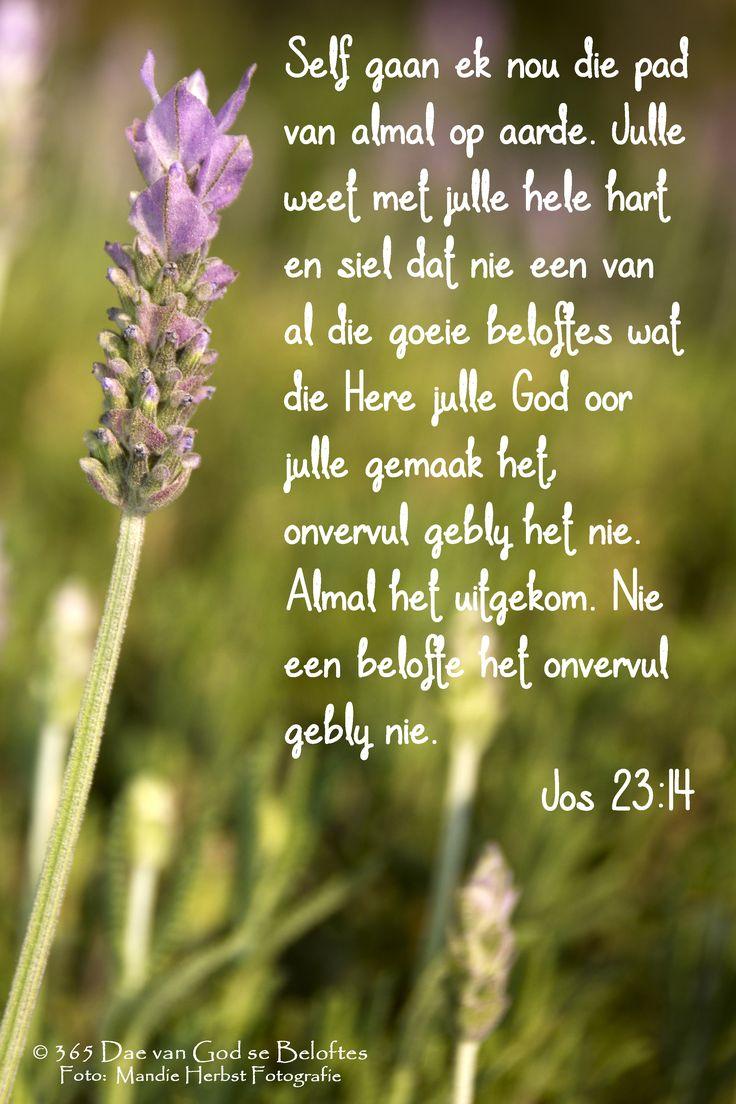 Jos 23:14 Self gaan ek nou die pad van almal op aarde. Julle weet met julle hele hart en siel dat nie een van al die goeie beloftes wat die Here julle God oor julle gemaak het, onvervul gebly het nie. Almal het uitgekom. Nie een belofte het onvervul gebly nie.
