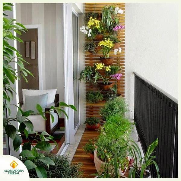 1000+ images about Plantas Flores e Jardins on Pinterest ...