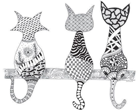 Kočky